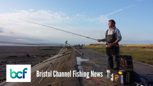Bristol Channel fishing news